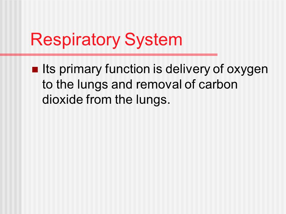 Respiratory System Its primary function is delivery of oxygen to the lungs and removal of carbon dioxide from the lungs.