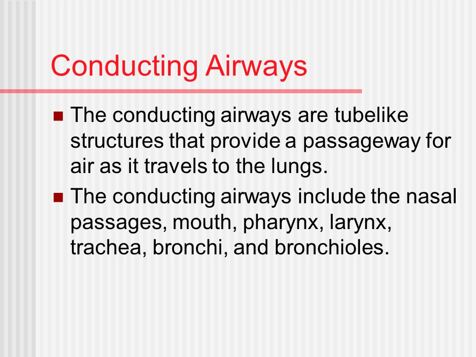 Conducting Airways The conducting airways are tubelike structures that provide a passageway for air as it travels to the lungs.