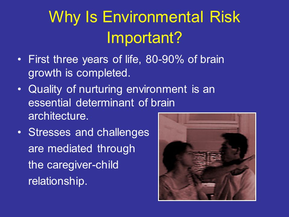 Why Is Environmental Risk Important.