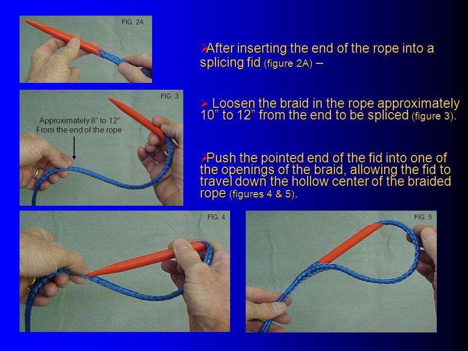 Hollow Braid Back Splice  A properly sized hollow braid splicing