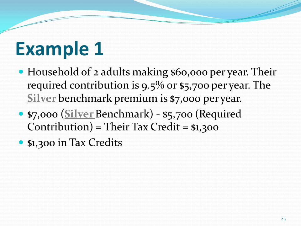 Example 1 Household of 2 adults making $60,000 per year.