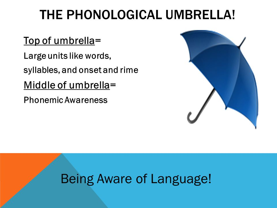 THE PHONOLOGICAL UMBRELLA.