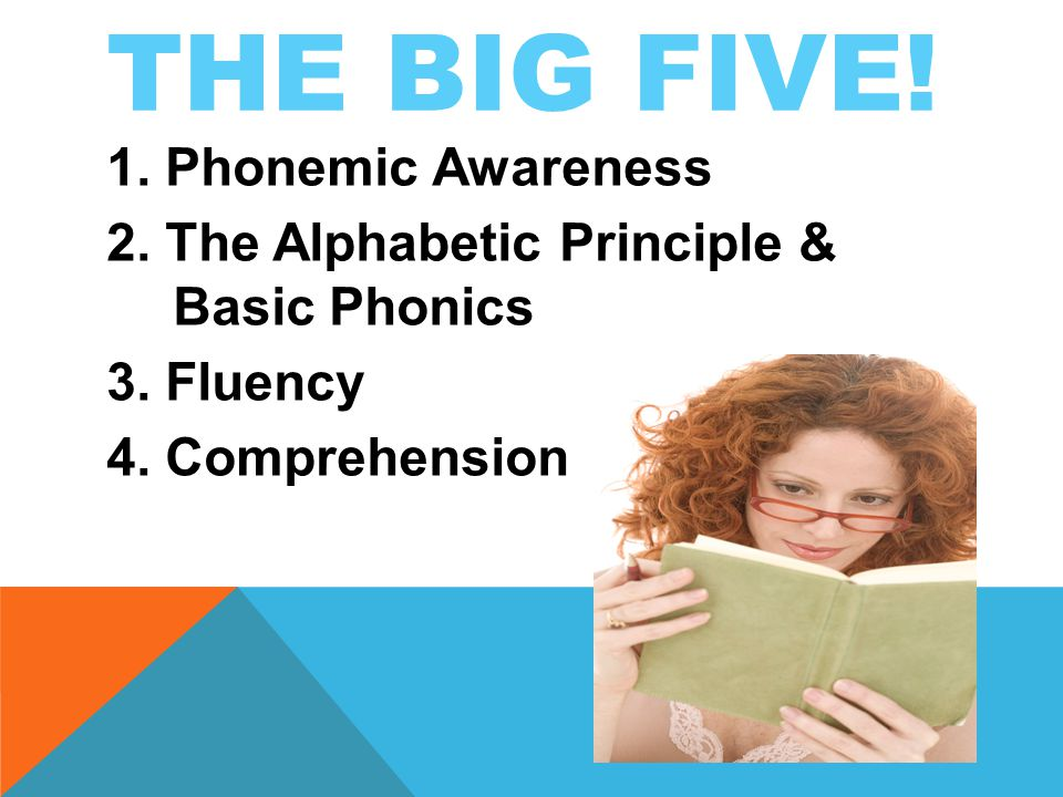 THE BIG FIVE. 1. Phonemic Awareness 2. The Alphabetic Principle & Basic Phonics 3.