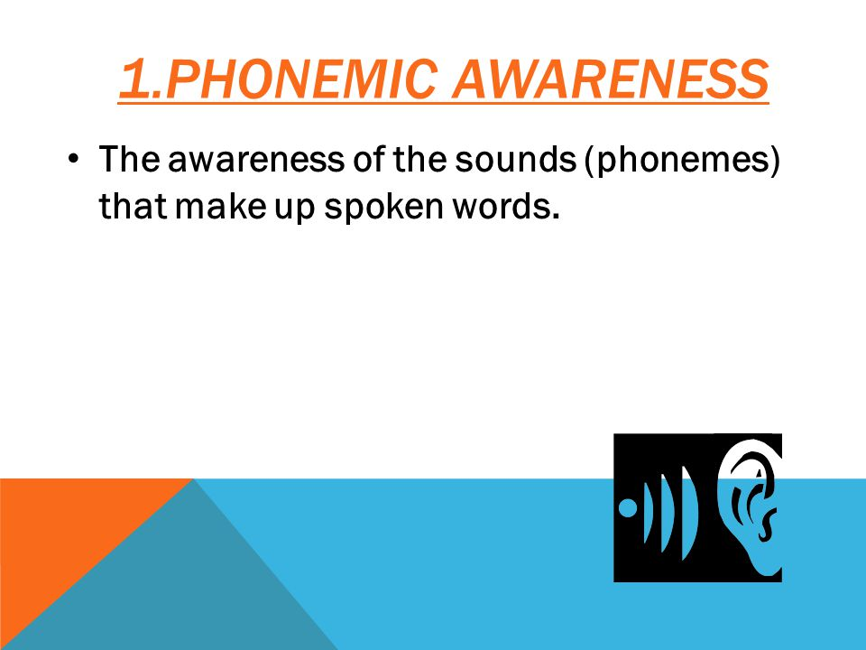 The awareness of the sounds (phonemes) that make up spoken words.