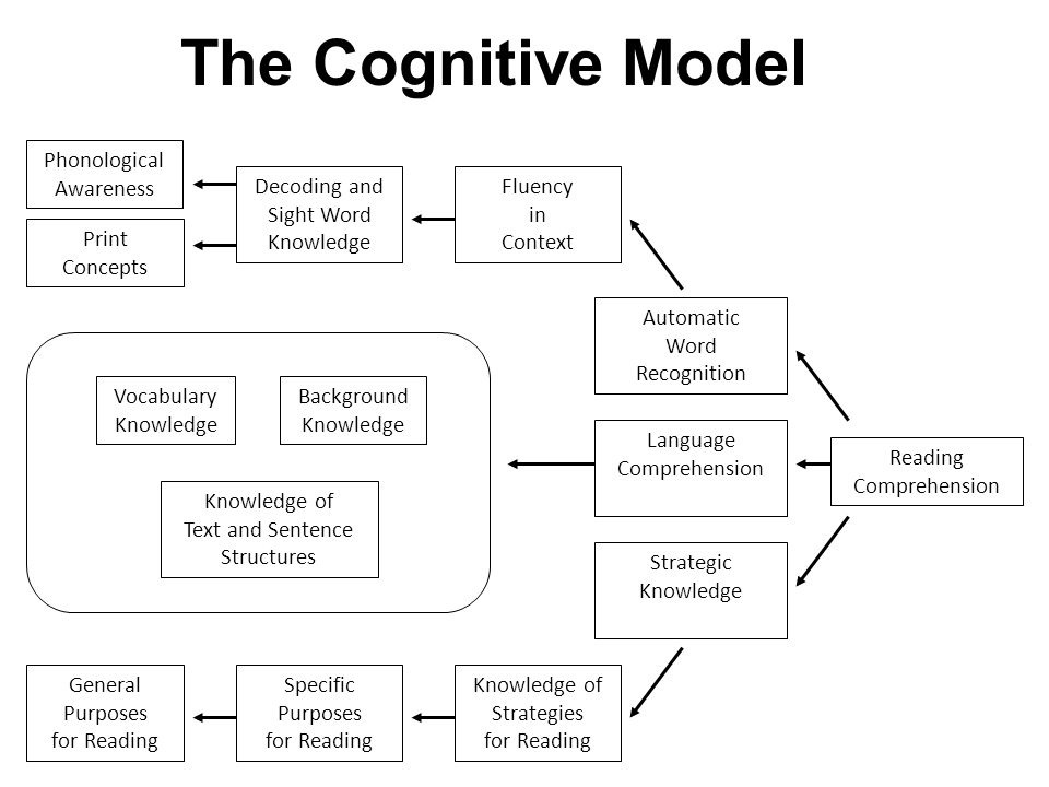 The Cognitive Model Phonological Awareness Decoding and Sight Word Knowledge Print Concepts Fluency in Context Automatic Word Recognition Reading Comprehension Language Comprehension Strategic Knowledge General Purposes for Reading Specific Purposes for Reading Knowledge of Strategies for Reading Vocabulary Knowledge Background Knowledge Knowledge of Text and Sentence Structures