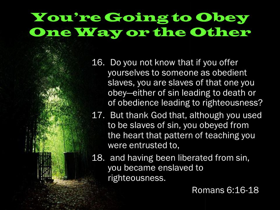 You're Going to Obey One Way or the Other 16.