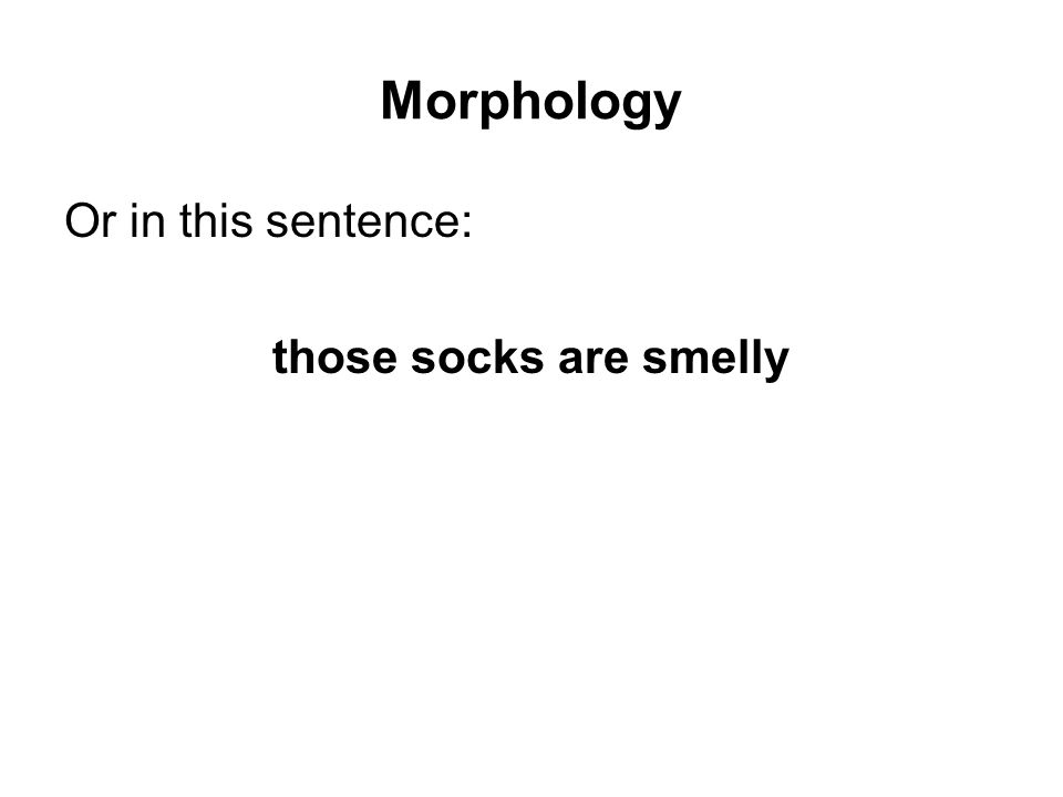 Morphology Or in this sentence: those socks are smelly