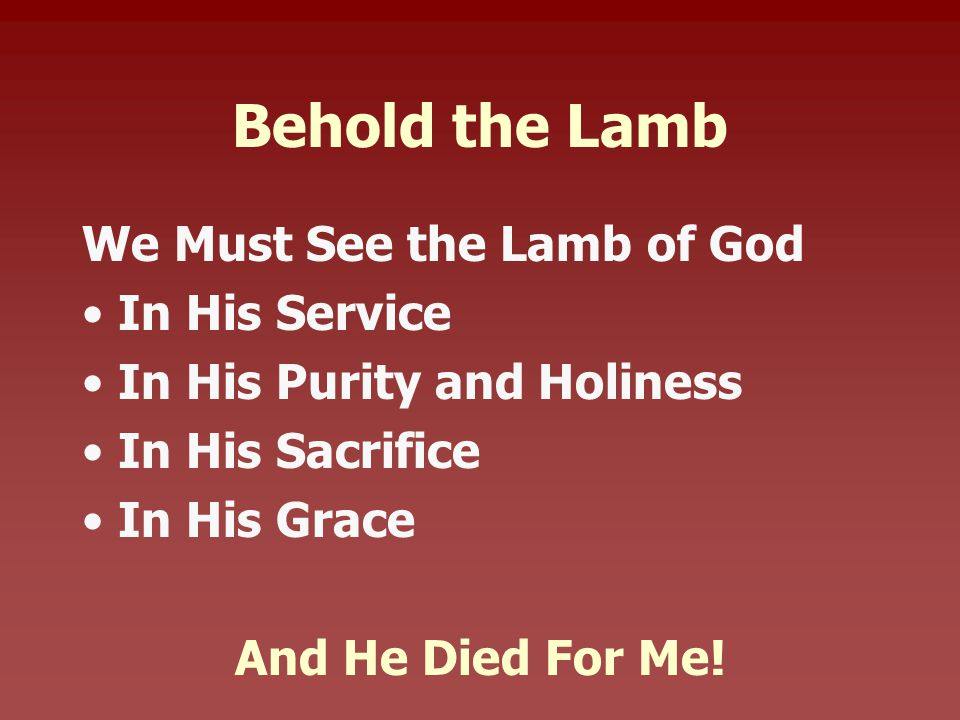 Behold the Lamb We Must See the Lamb of God In His Service In His Purity and Holiness In His Sacrifice In His Grace And He Died For Me!
