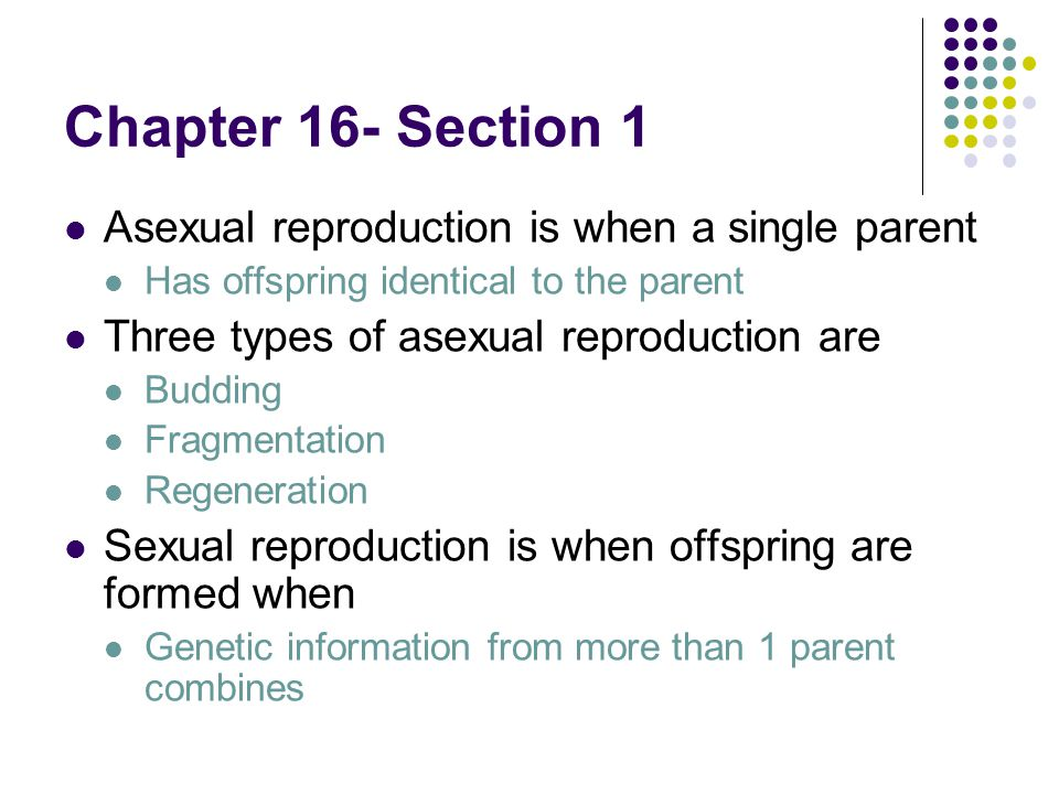 Describe regeneration in asexual reproduction of the genetic information