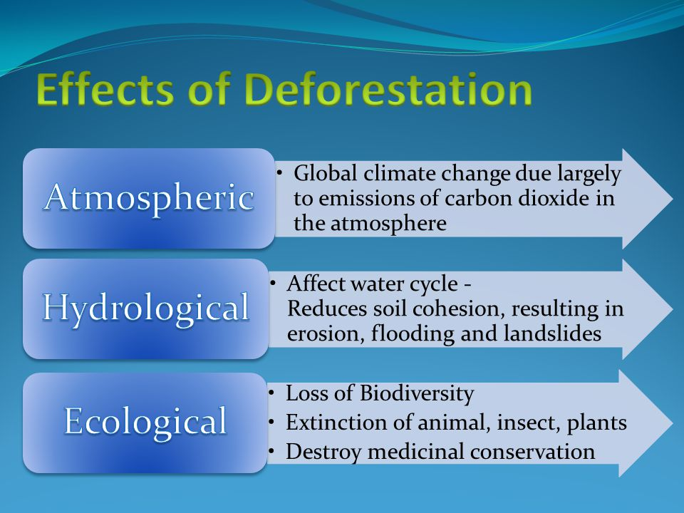 Global climate change due largely to emissions of carbon dioxide in the atmosphere Affect water cycle - Reduces soil cohesion, resulting in erosion, flooding and landslides Loss of Biodiversity Extinction of animal, insect, plants Destroy medicinal conservation
