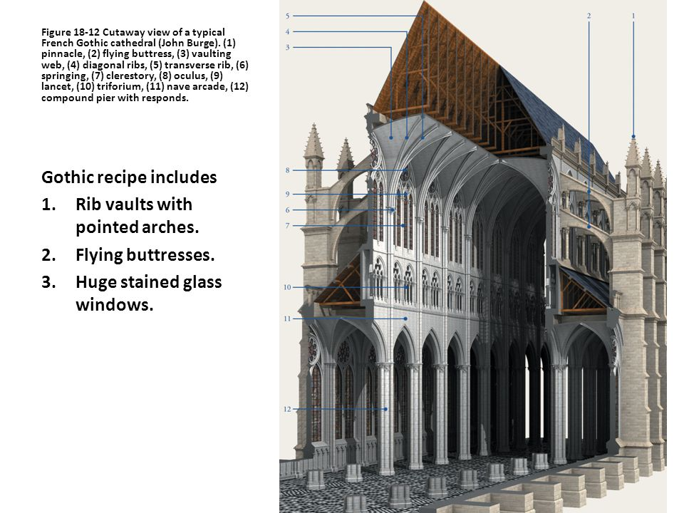Figure Cutaway View Of A Typical French Gothic Cathedral John Burge