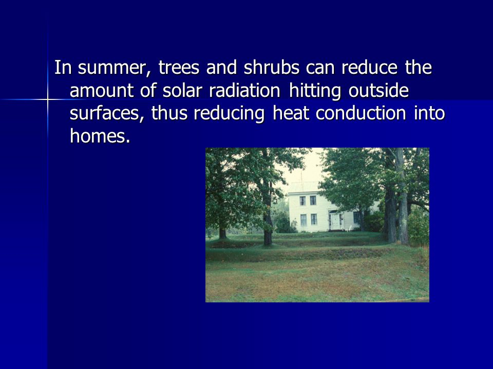 In summer, trees and shrubs can reduce the amount of solar radiation hitting outside surfaces, thus reducing heat conduction into homes.