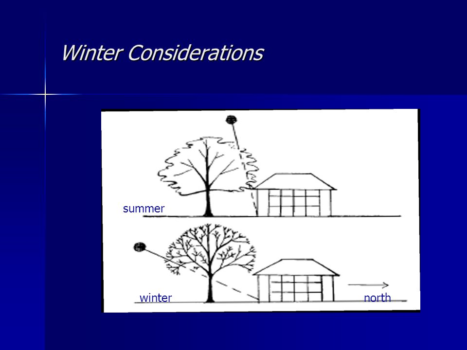 Winter Considerations north summer winter