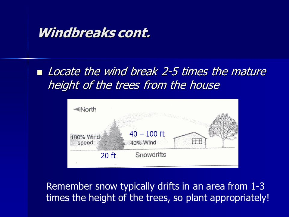 Windbreaks cont.