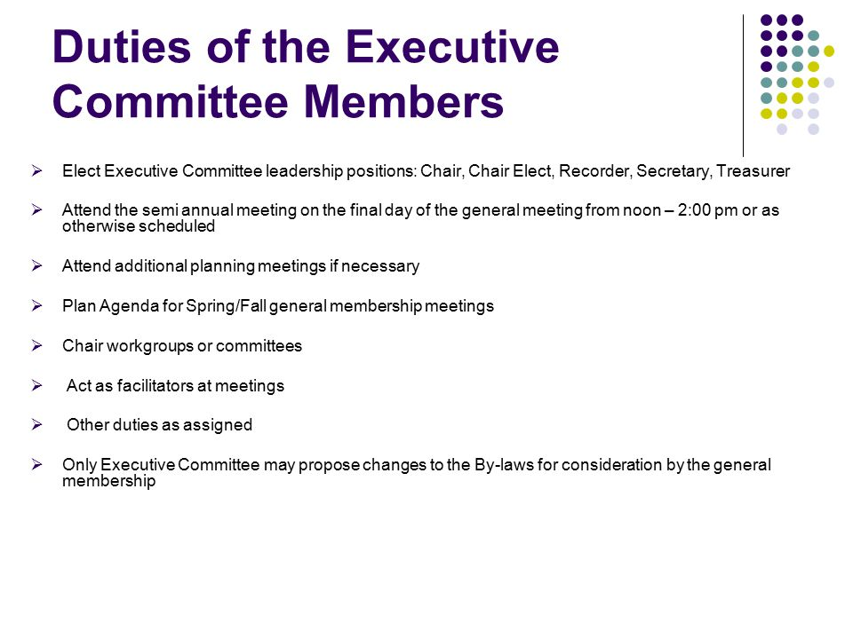 Duties of the Executive Committee Members  Elect Executive Committee leadership positions: Chair, Chair Elect, Recorder, Secretary, Treasurer  Attend the semi annual meeting on the final day of the general meeting from noon – 2:00 pm or as otherwise scheduled  Attend additional planning meetings if necessary  Plan Agenda for Spring/Fall general membership meetings  Chair workgroups or committees  Act as facilitators at meetings  Other duties as assigned  Only Executive Committee may propose changes to the By-laws for consideration by the general membership