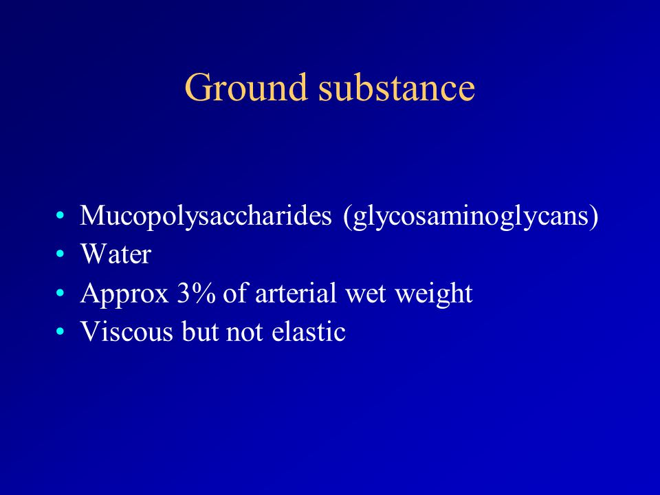 Ground substance Mucopolysaccharides (glycosaminoglycans) Water Approx 3% of arterial wet weight Viscous but not elastic