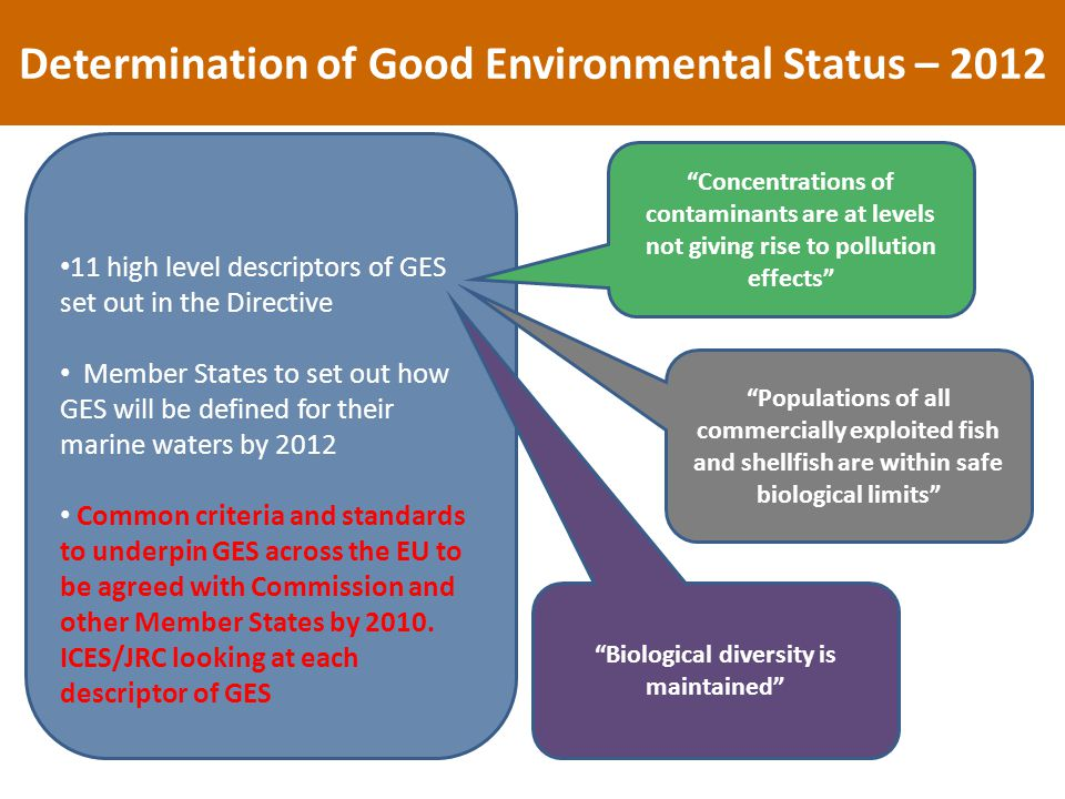 Determination of Good Environmental Status – high level descriptors of GES set out in the Directive Member States to set out how GES will be defined for their marine waters by 2012 Common criteria and standards to underpin GES across the EU to be agreed with Commission and other Member States by 2010.