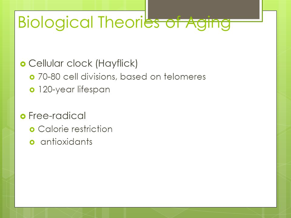 Biological Theories of Aging  Cellular clock (Hayflick)  cell divisions, based on telomeres  120-year lifespan  Free-radical  Calorie restriction  antioxidants