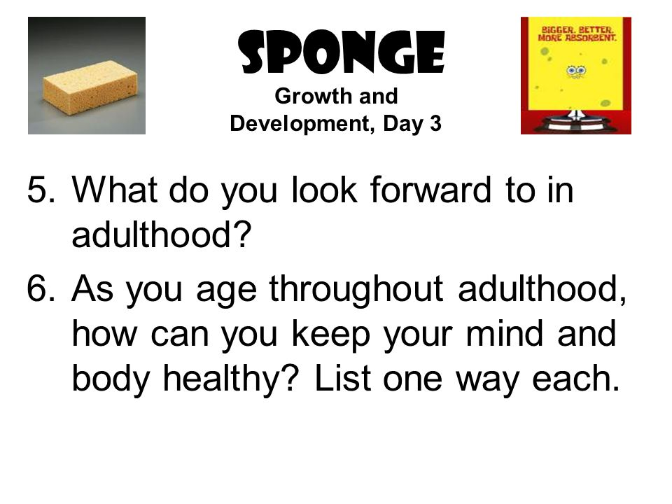SPONGE 5.What do you look forward to in adulthood.
