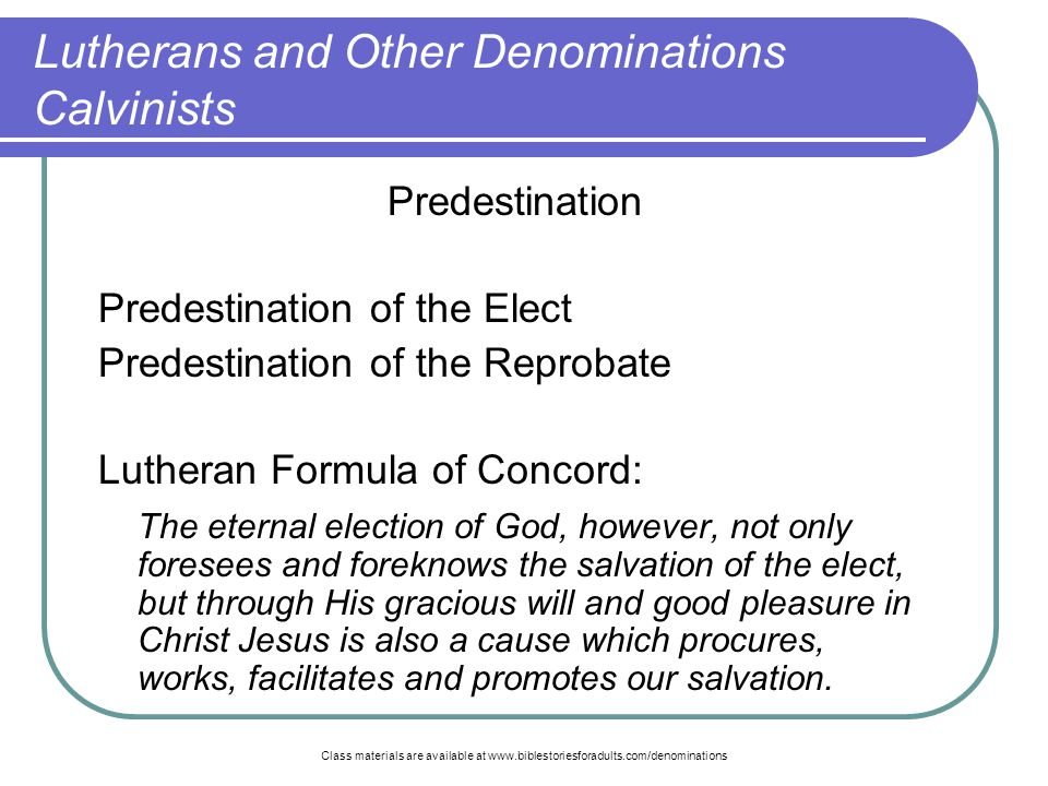 calvinism vs lutheranism