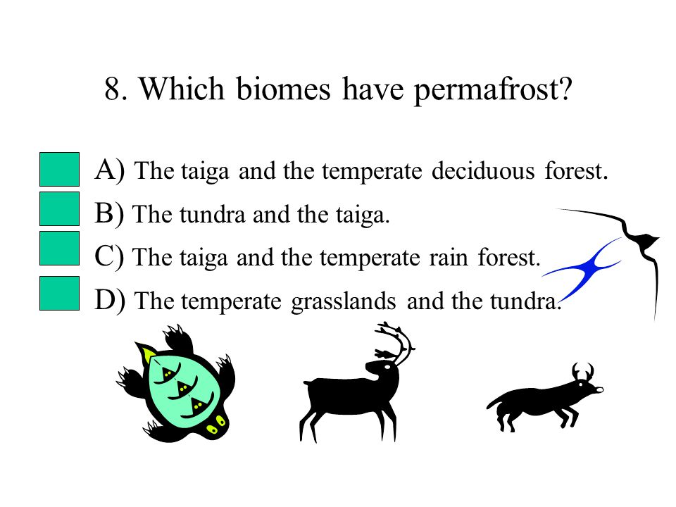 8. Which biomes have permafrost. A) The taiga and the temperate deciduous forest.