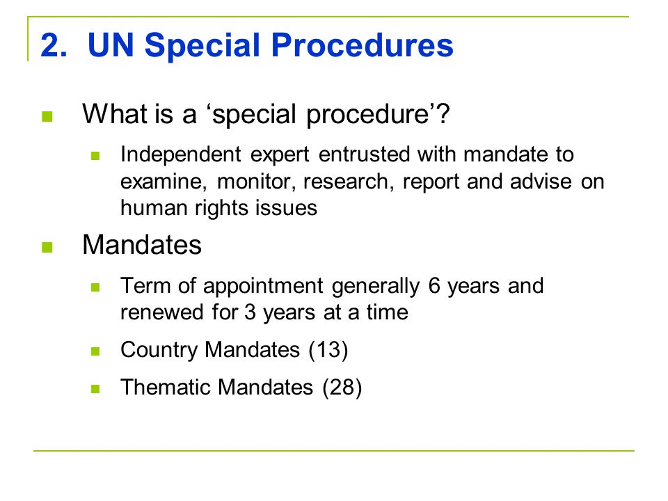 2. UN Special Procedures What is a 'special procedure'.