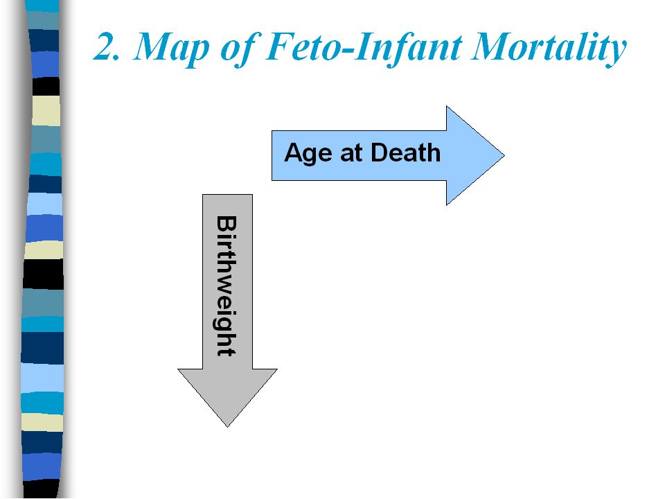 Perinatal Periods of Risk-A Tool for Improving the Health of Mothers ...