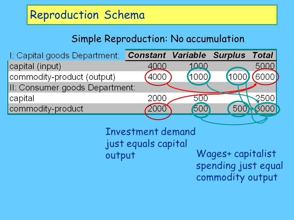 Reproduction Schema Simple Reproduction: No accumulation Wages+ capitalist spending just equal commodity output Investment demand just equals capital output