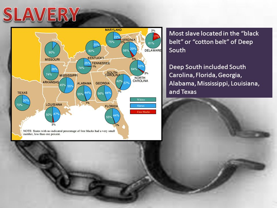 Most slave located in the black belt or cotton belt of Deep South Deep South included South Carolina, Florida, Georgia, Alabama, Mississippi, Louisiana, and Texas