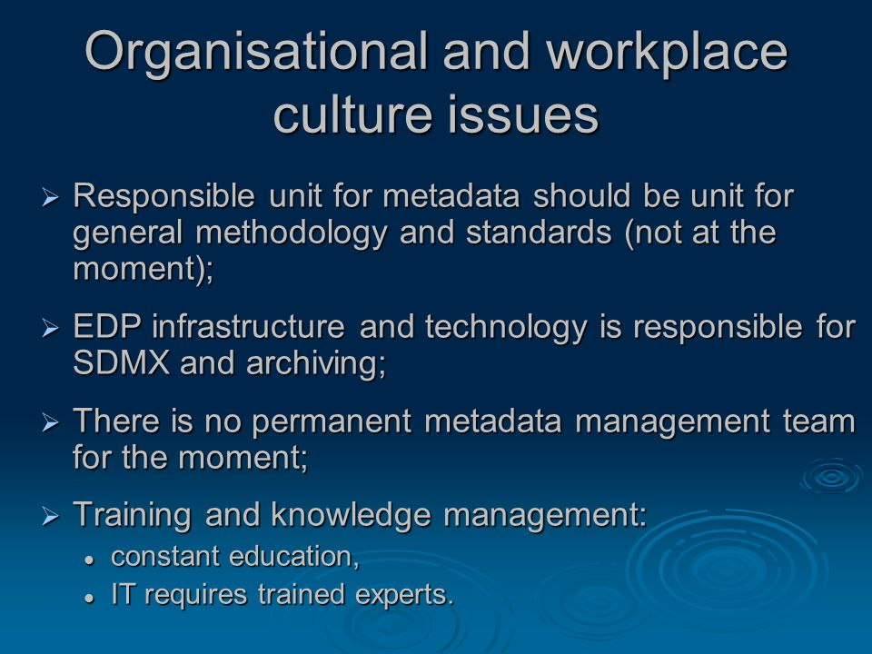 Organisational and workplace culture issues  Responsible unit for metadata should be unit for general methodology and standards (not at the moment);  EDP infrastructure and technology is responsible for SDMX and archiving;  There is no permanent metadata management team for the moment;  Training and knowledge management: constant education, constant education, IT requires trained experts.