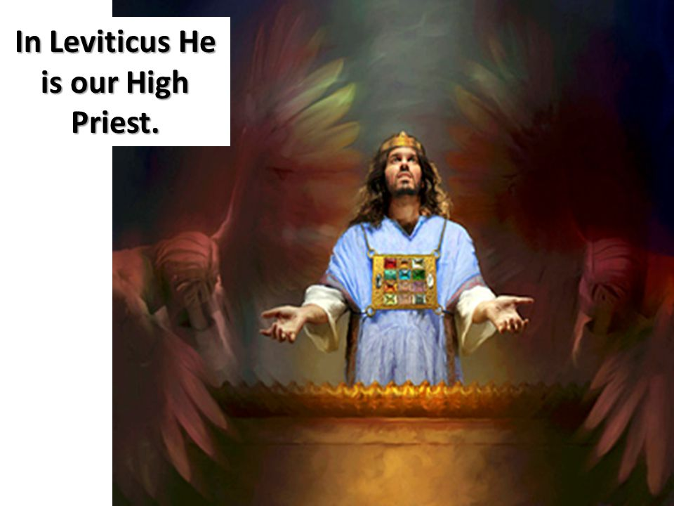 In Leviticus He is our High Priest.
