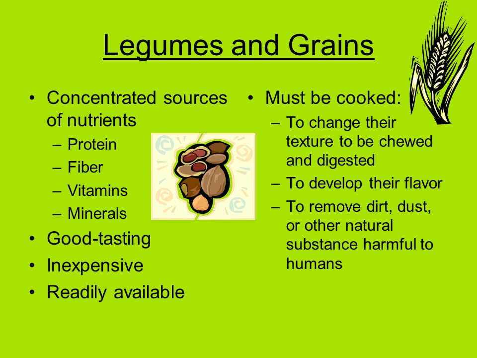 Legumes and Grains Concentrated sources of nutrients –Protein –Fiber –Vitamins –Minerals Good-tasting Inexpensive Readily available Must be cooked: –To change their texture to be chewed and digested –To develop their flavor –To remove dirt, dust, or other natural substance harmful to humans