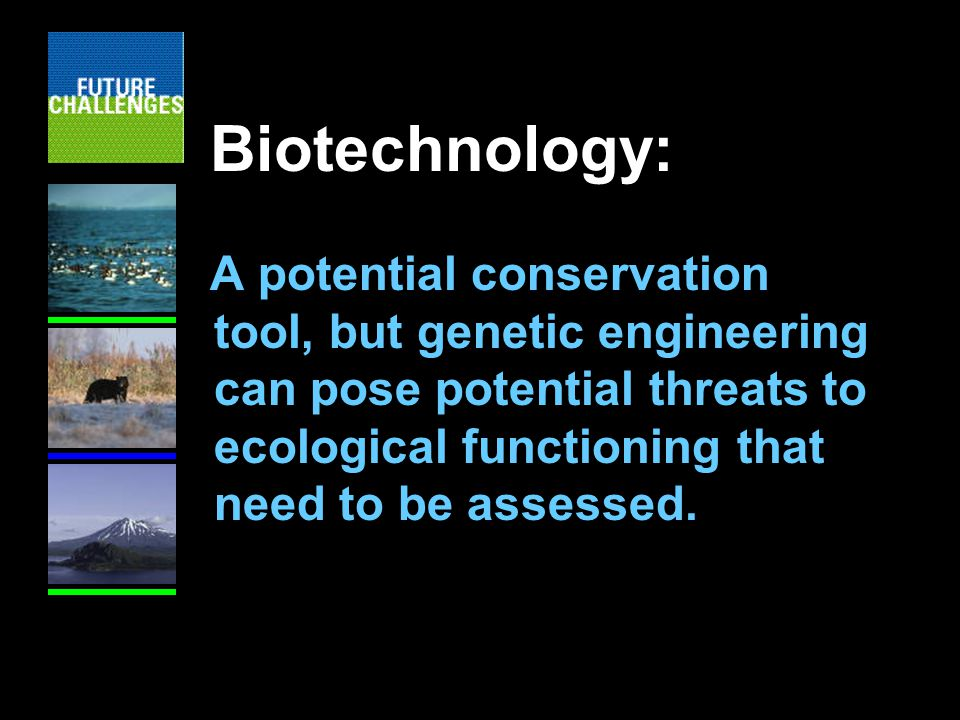 Biotechnology: A potential conservation tool, but genetic engineering can pose potential threats to ecological functioning that need to be assessed.