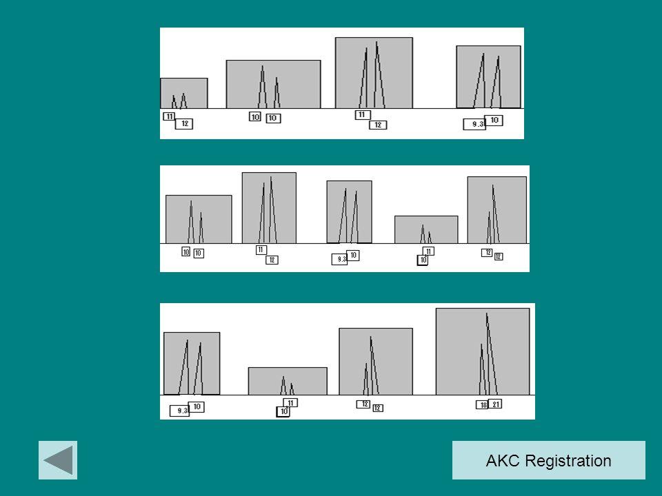 DNA Profiles Human HairFelineCanine Hair  Annabel Farqua