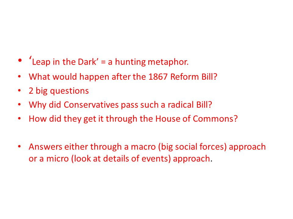 ' Leap in the Dark' = a hunting metaphor. What would happen after the 1867 Reform Bill.