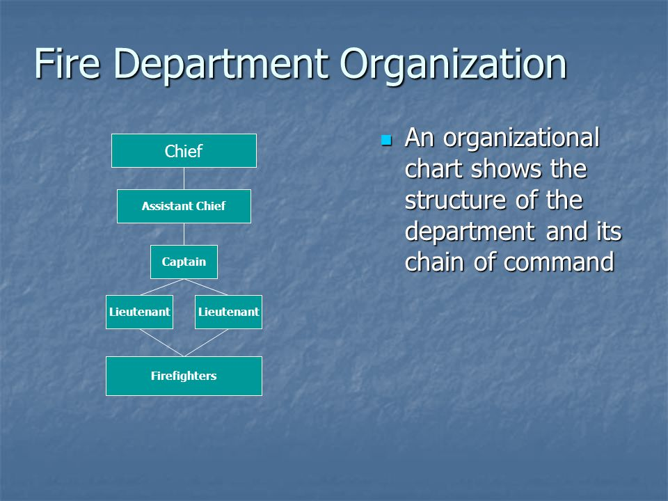 Fire Department Organization An organizational chart shows the structure of the department and its chain of command An organizational chart shows the structure of the department and its chain of command Chief Assistant Chief Captain Lieutenant Firefighters