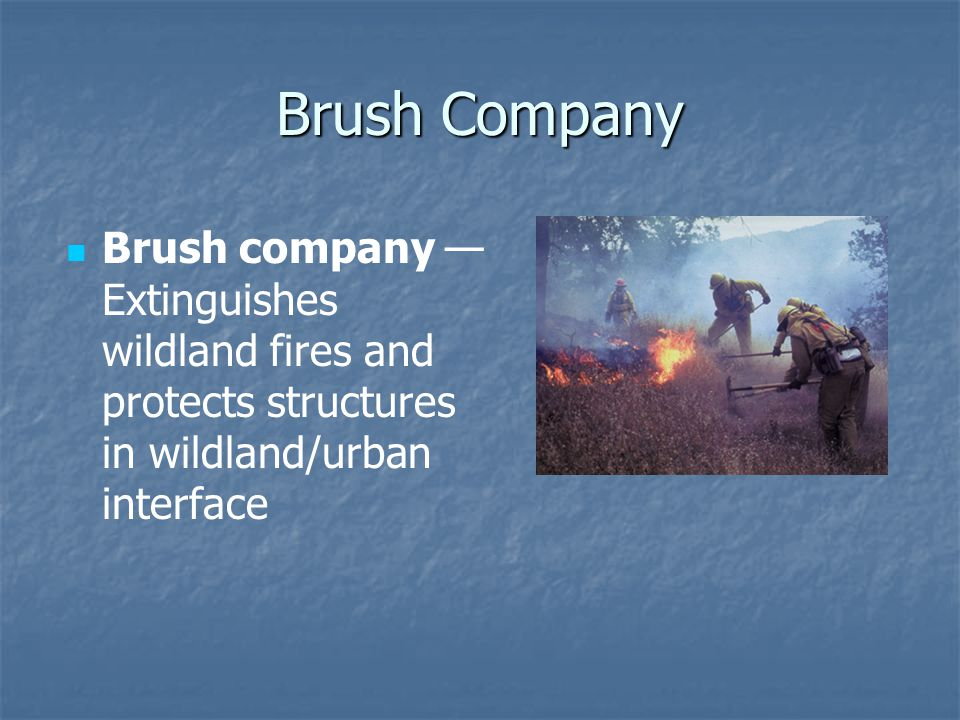 Brush Company Brush company — Extinguishes wildland fires and protects structures in wildland/urban interface