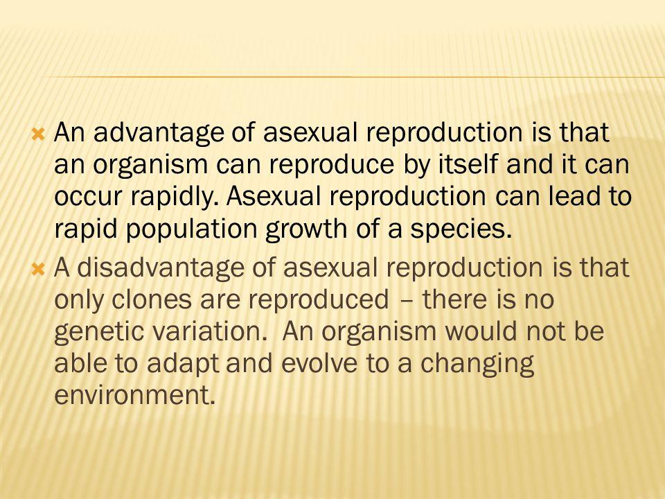 Can asexually reproducing bacteria evolve