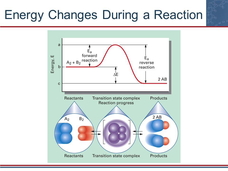 Energy Changes During a Reaction