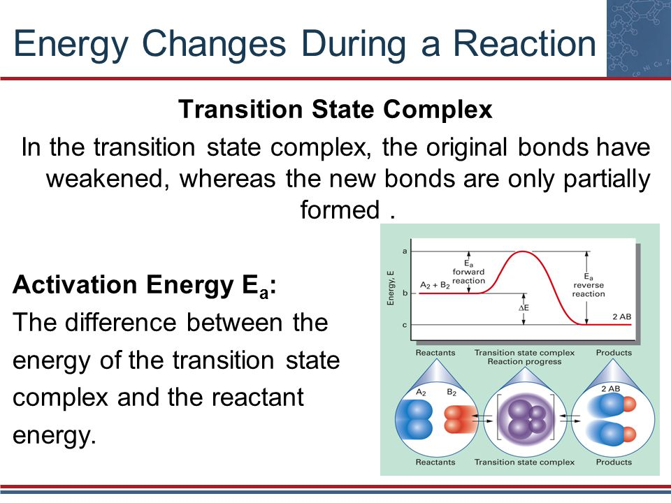Transition State Complex In the transition state complex, the original bonds have weakened, whereas the new bonds are only partially formed.