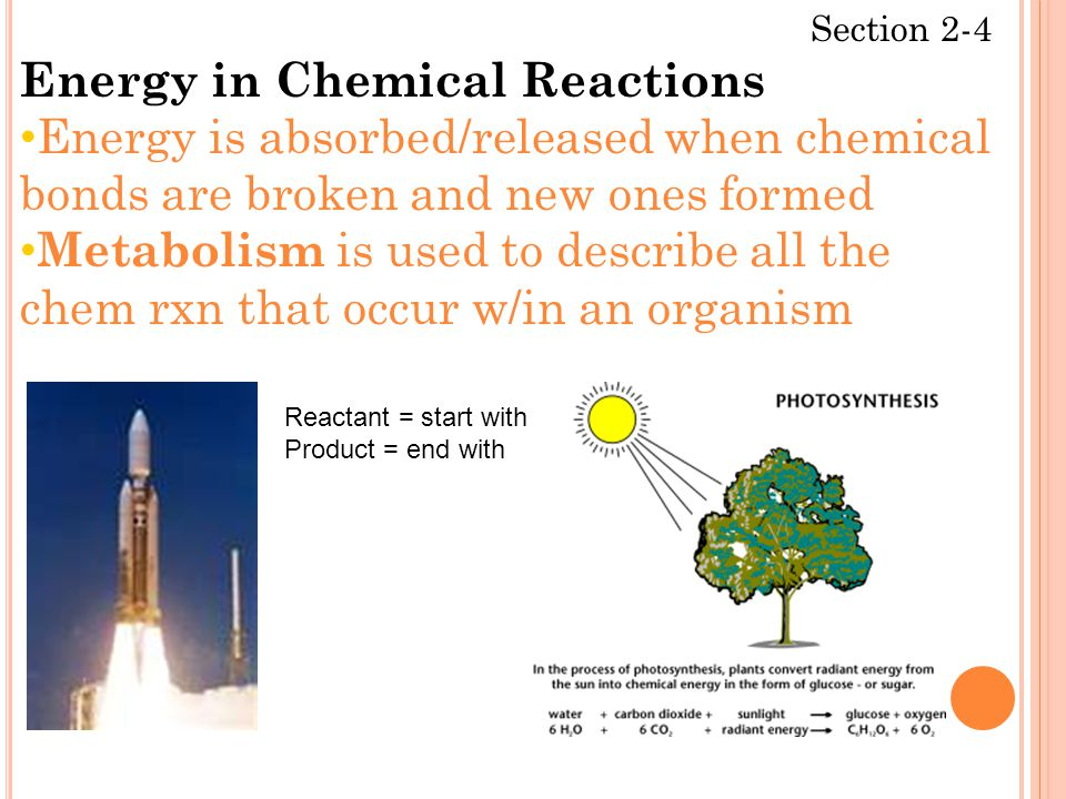 Section 2-4 Energy in Chemical Reactions Energy is absorbed/released when chemical bonds are broken and new ones formed Metabolism is used to describe all the chem rxn that occur w/in an organism Reactant = start with Product = end with