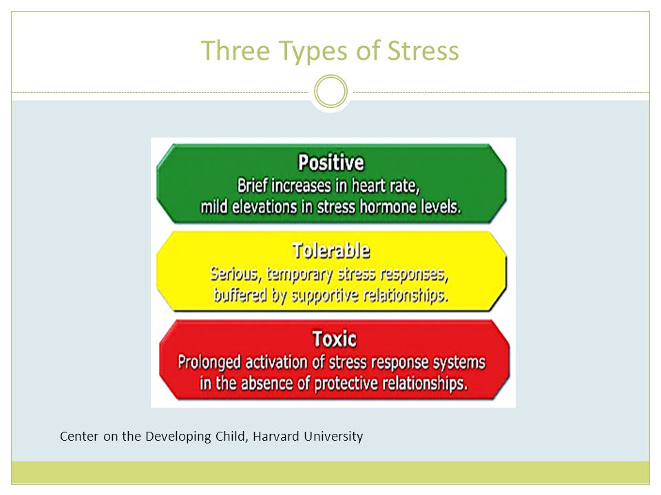 Three Types of Stress Center on the Developing Child, Harvard University
