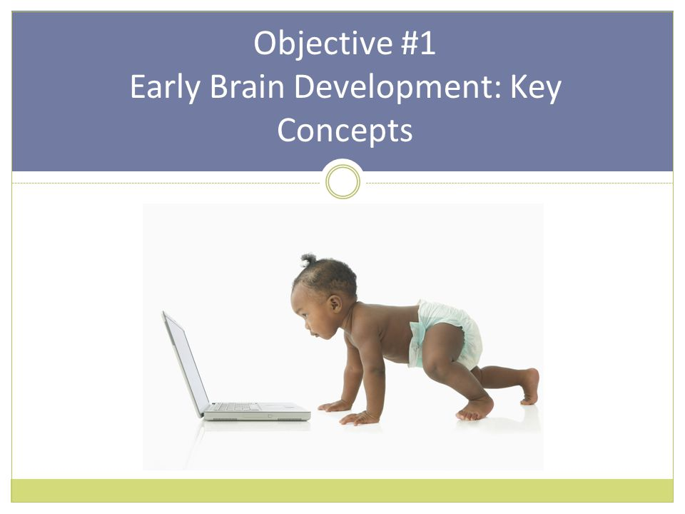 Objective #1 Early Brain Development: Key Concepts