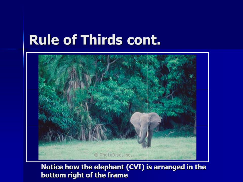 Rule of Thirds cont. Notice how the elephant (CVI) is arranged in the bottom right of the frame