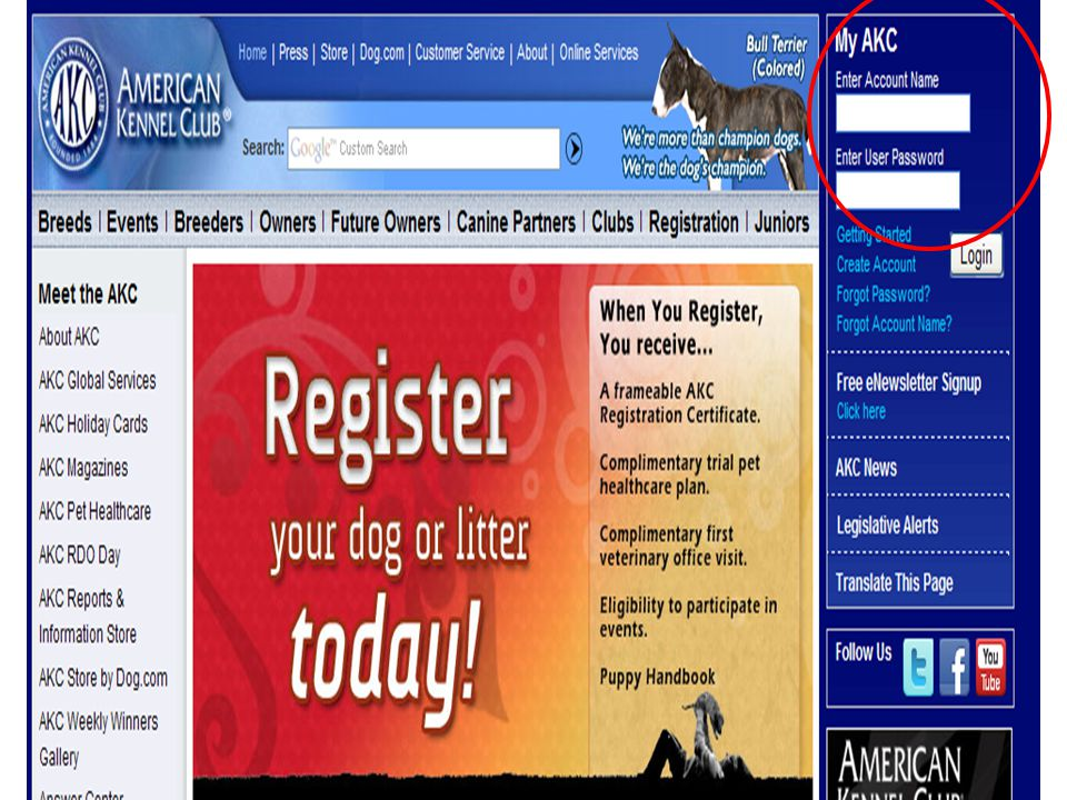 The AKC Website – A Tour Charley Kneifel 8/28/10 Parent Club