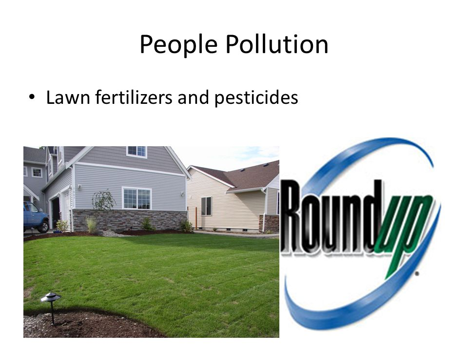 People Pollution Lawn fertilizers and pesticides
