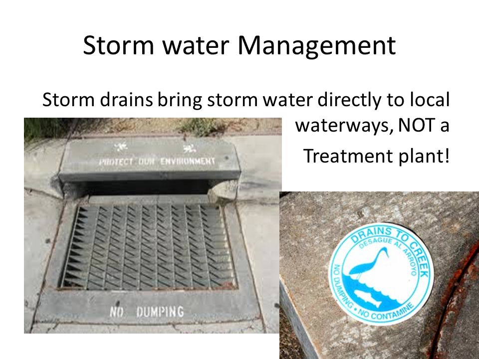 Storm water Management Storm drains bring storm water directly to local waterways, NOT a Treatment plant!