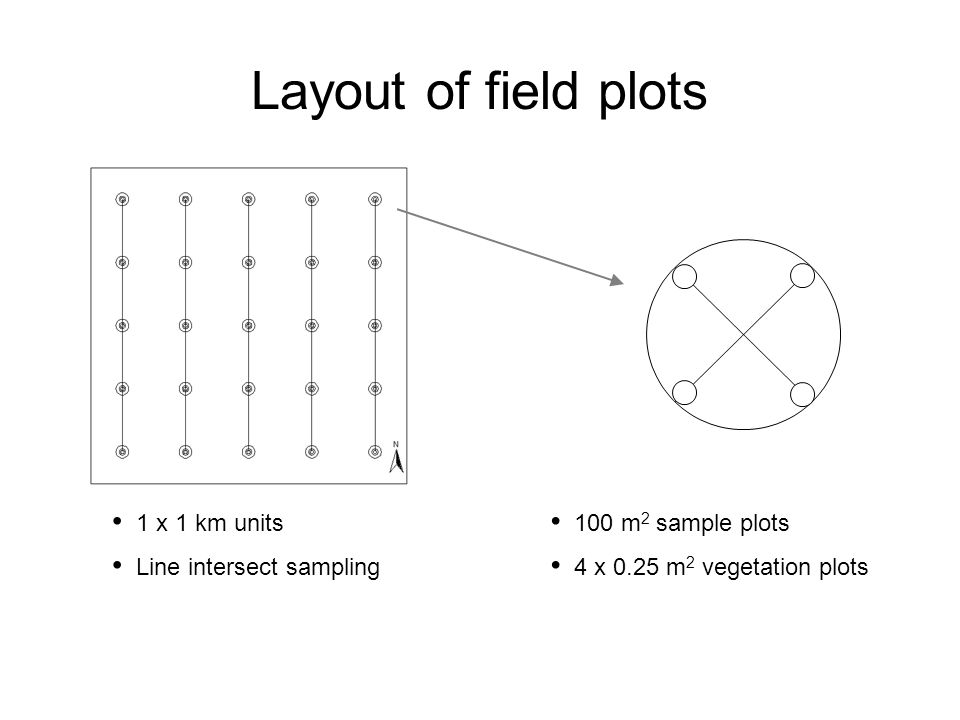 Layout of field plots 1 x 1 km units Line intersect sampling 100 m 2 sample plots 4 x 0.25 m 2 vegetation plots