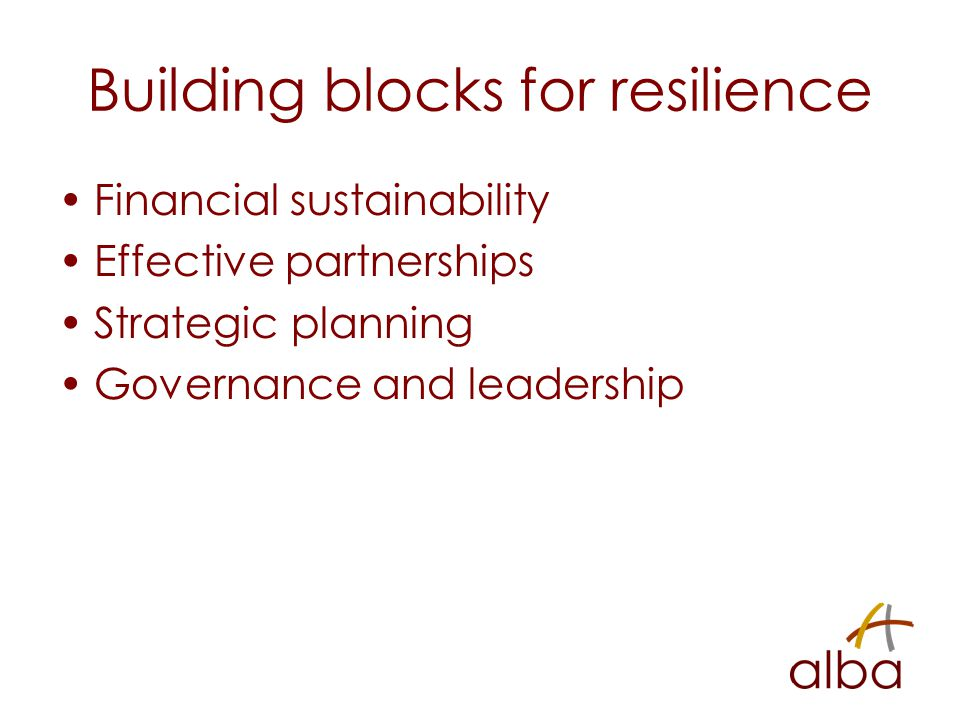 Building blocks for resilience Financial sustainability Effective partnerships Strategic planning Governance and leadership