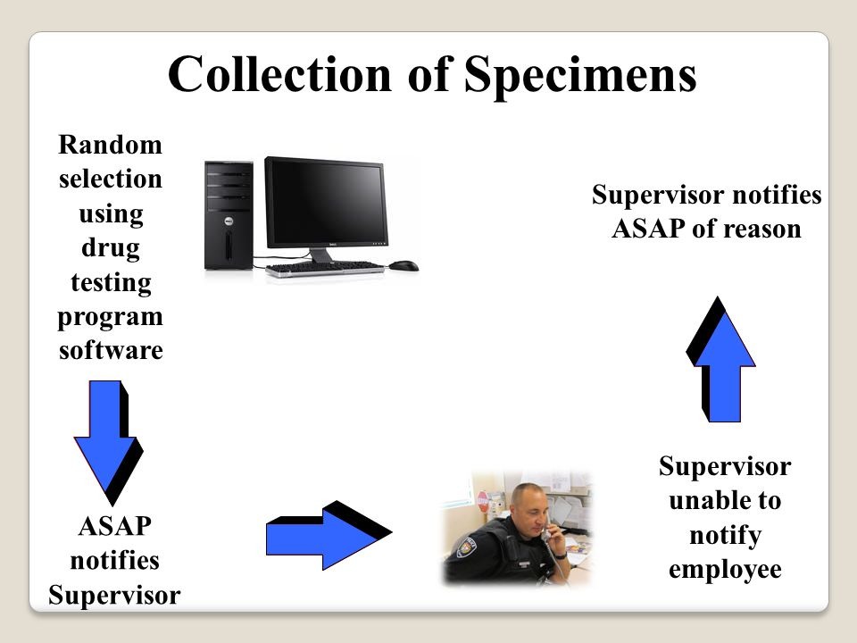 Collection of Specimens ASAP notifies Supervisor Supervisor unable to notify employee Supervisor notifies ASAP of reason Random selection using drug testing program software